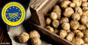 pommes de terre Noirmoutier